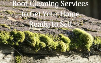 Roof Cleaning Services to Get Your Home Ready to Sell