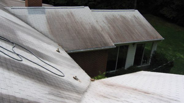 discolored roof-mildew on roof-Henderson-Buncombe