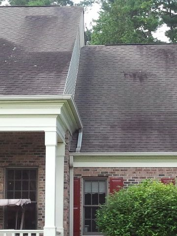 Roof cleaning and gutters-Roof cleaning and moss removal