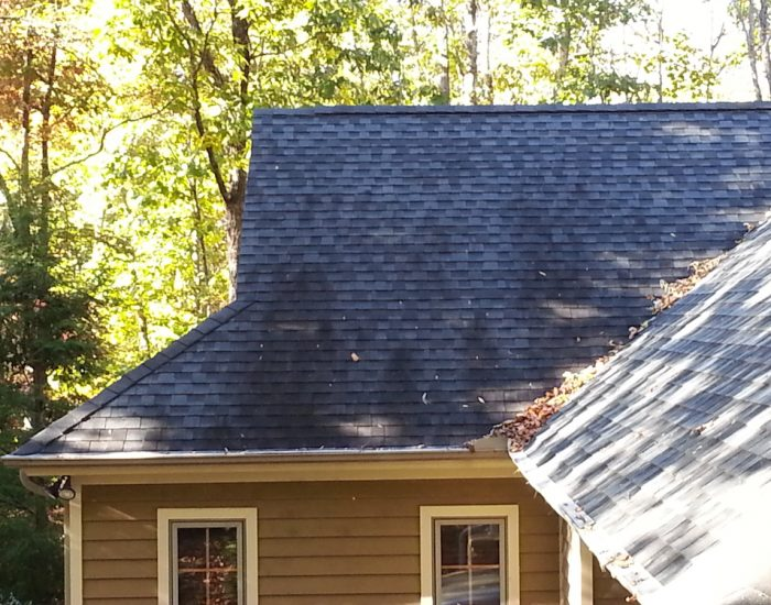 Roof cleaning services-Roof cleaning company