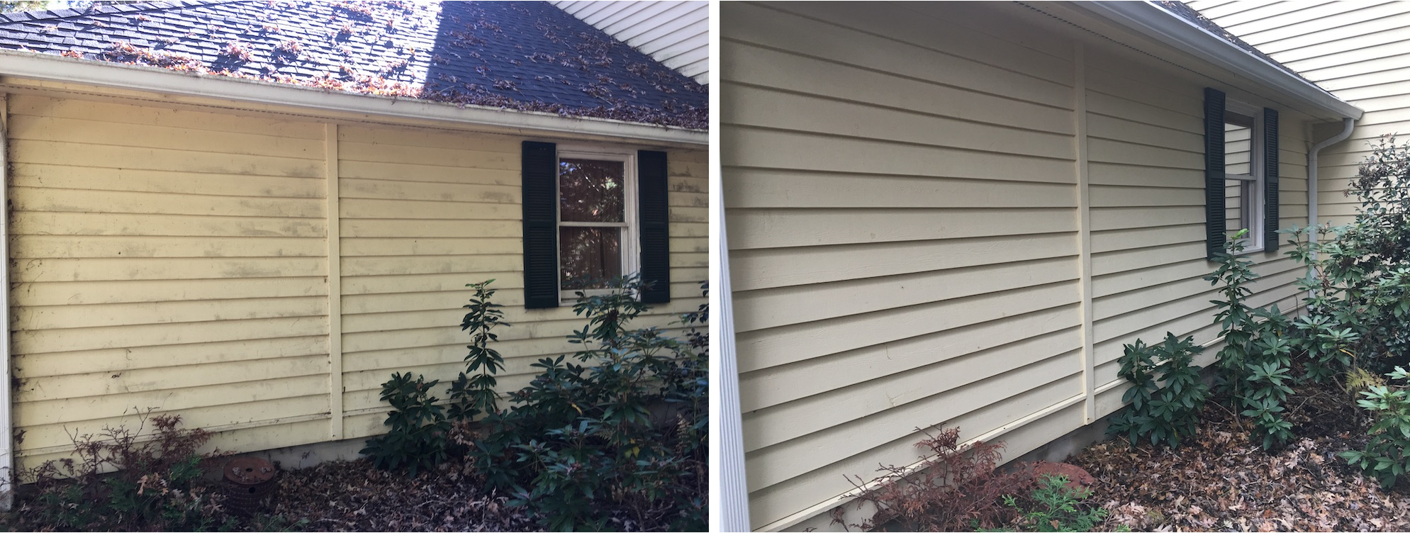 Exterior House Washing Services | Remove Mildew & Algae Now