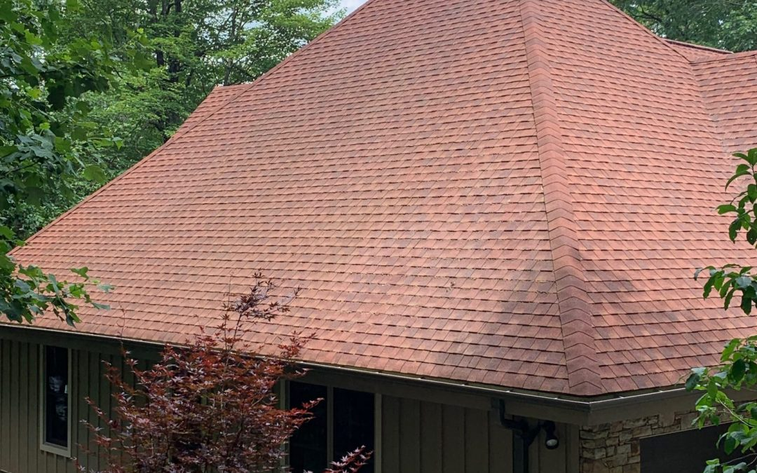 The Cost of Roof Cleaning Near Me