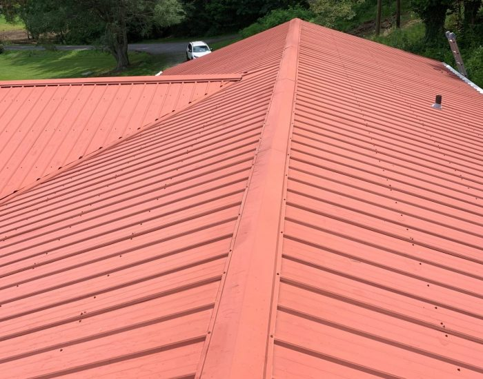 clean metal roof-ProClean Roof Cleaning-roof cleaners near me