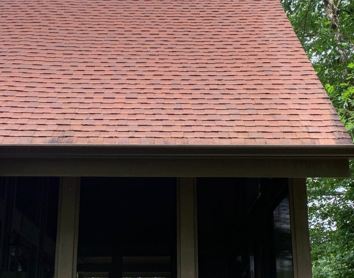 roof cleaner near me-roof replacement costs-cleaned roof of mildew