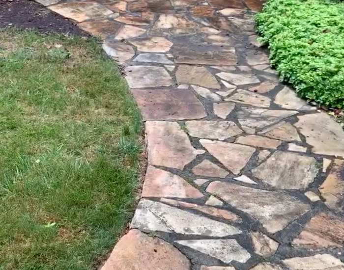 mold and mildew on flagstone walkway