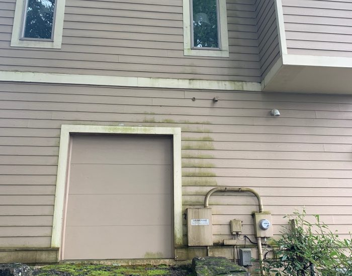 moss and mildew removal power washing company -Hendersonville NC