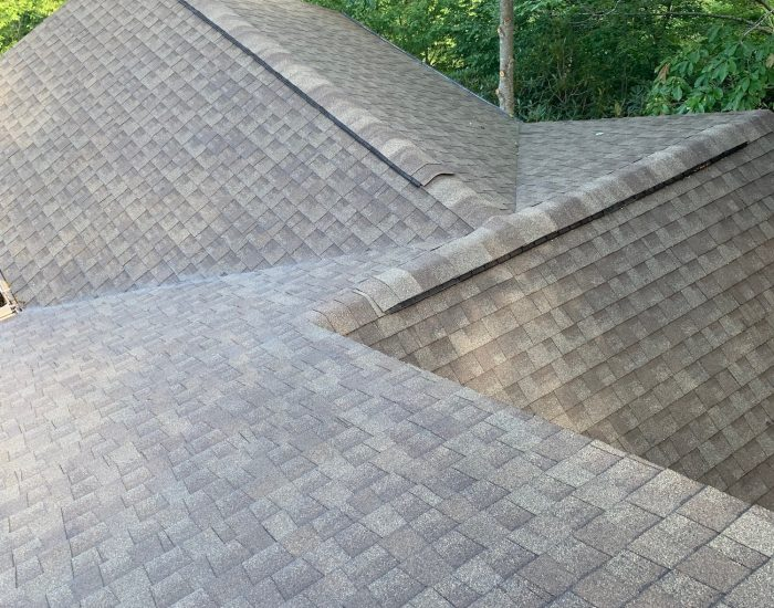 clean asphalt shingles after roof cleaning