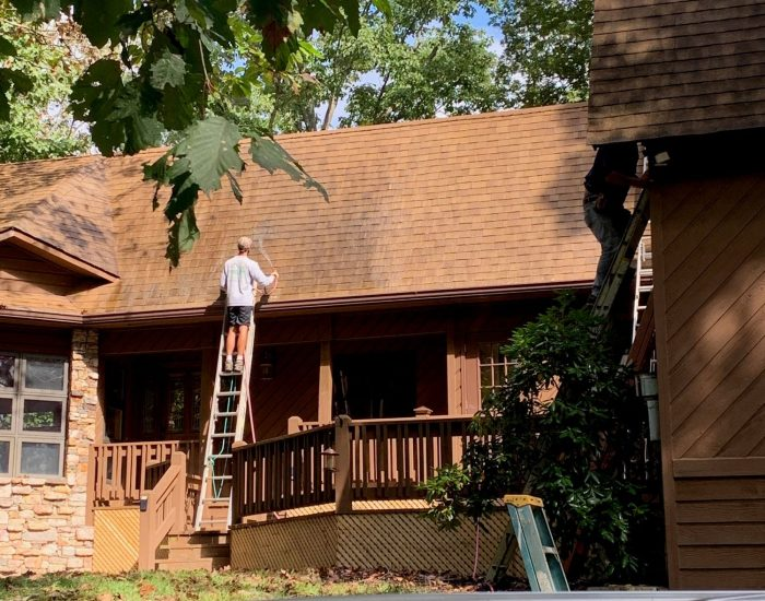 mold and mildew cleaning-low pressure cleaning of roof