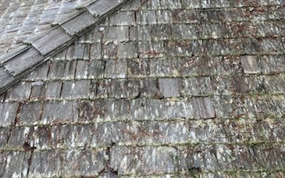 Do's and Don'ts: Cleaning Your Roof