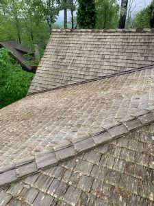 moss on roof before ProClean Roof Cleaning