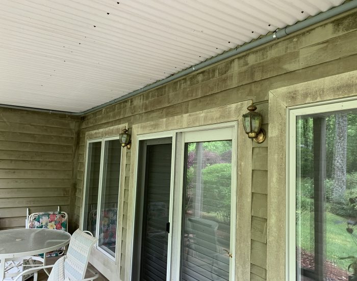 porch with algae and mold