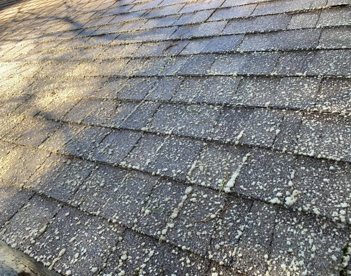 2roof after low pressure cleaning