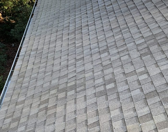 roof cleaning mold removal