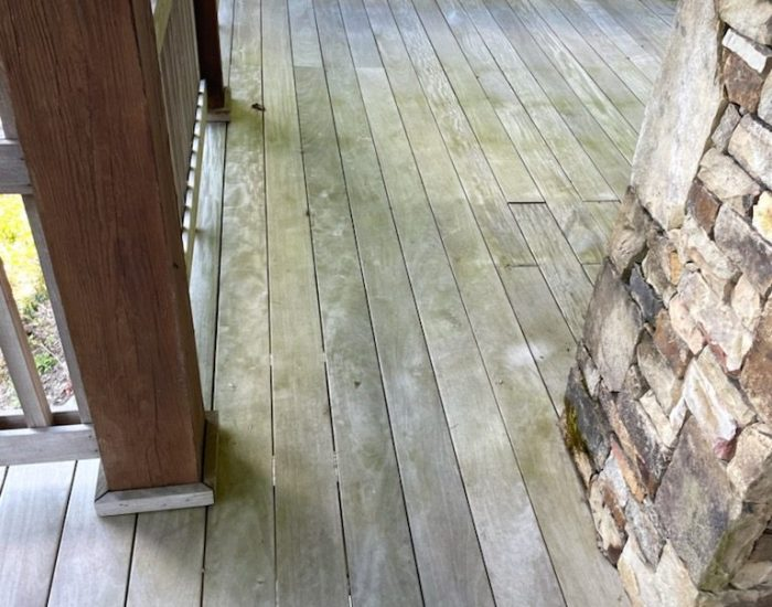 algae on deck-deck cleaning before