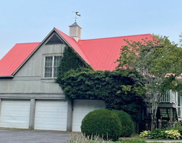 mildew removal on metal roofing