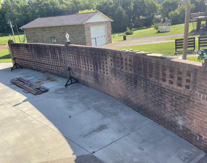 mold and mildew on brick